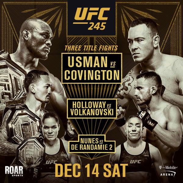 More Info for UFC 245